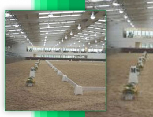 Mainland Construction – Equestrian Arena